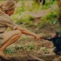 Soha nem látott felvételekkel jön a Jane Goodall életéről szóló film