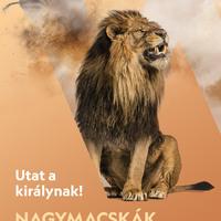 Tematikus programsorozattal jelentkezik a megújuló National Geographic Wild