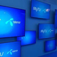 Az év applikációja lett a Telenor MyTV
