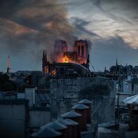 A Notre Dame leégéséről készített dokumentumfilmet a NatGeo
