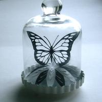 Pillangó a szkafanderben