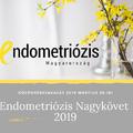 Ki legyen az év Endometriózis Nagykövete? A szavazás elindult!