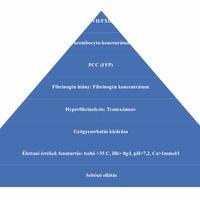A szülészeti vérzések kezelése -Dr. Hupuczi Petronella