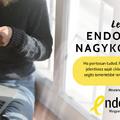Endometriózis Nagykövete Díj 2020