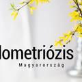 """Az """"Endometriózis Nagykövete 2018"""" Pályázat jelöltállítási időszaka elkezdődött!"""