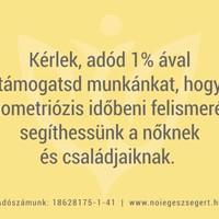 1%-kal az endometriózissal küzdőkért