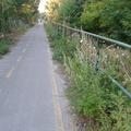 Szentendrét is eléri a kerékpárutak fejlesztése