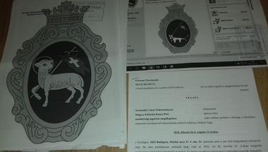 A bíróság kimondta: lehet kétfarkú kutyát rajzolni Szentendre címerébe