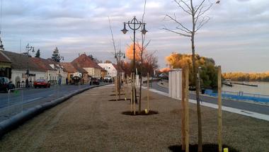Ültetik a fákat a Dunakorzón