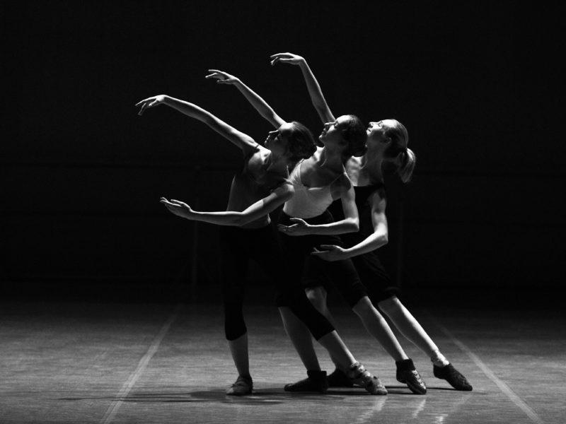 adult-art-ballerina-ballet-209948-800x600.jpg