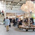 A svéd újrahasználati plázától a hazai adományboltokig