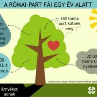 Szolgálnak és védenek a római-parti fák