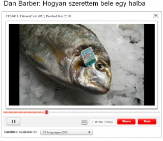 Hogyan szerettem bele egy halba