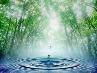Te meddig bírod víz nélkül?  -  1. rész