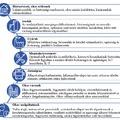 A digitalizáció fontossága a fenntartható fejlődésben