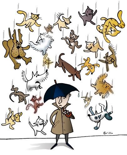 raincatsanddogs.jpg