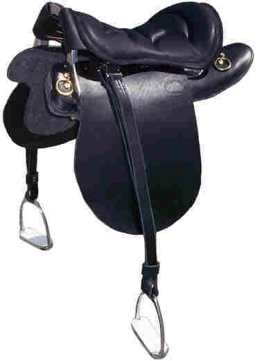 saddle_1.jpg