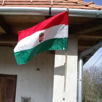 Ha én zászló volnék...