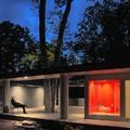 Fák köré épült luxusvilla a horrorállam mélyén