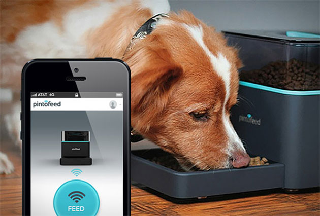 Pintofeed-Feed-Your-Pets-From-Your-Smartphone.jpg