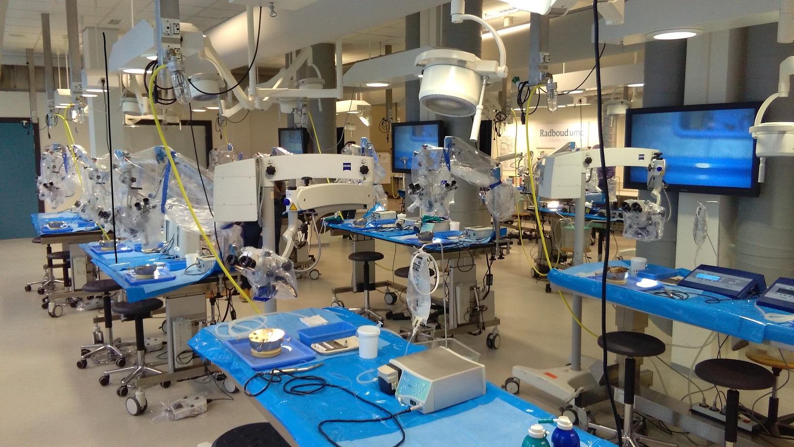 nijmegen_ear_course_bone_lab.jpg