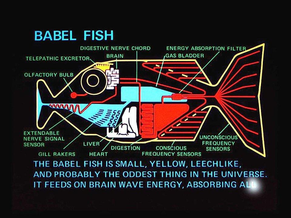 babel-fish.jpg