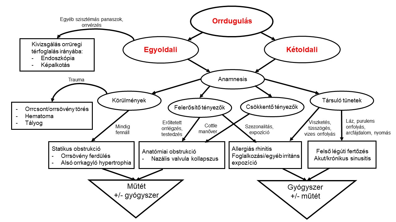 orrdugulas_kivizsgalas_-otoclinics.jpg