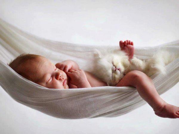 sleeping-baby-and-kitten.jpg