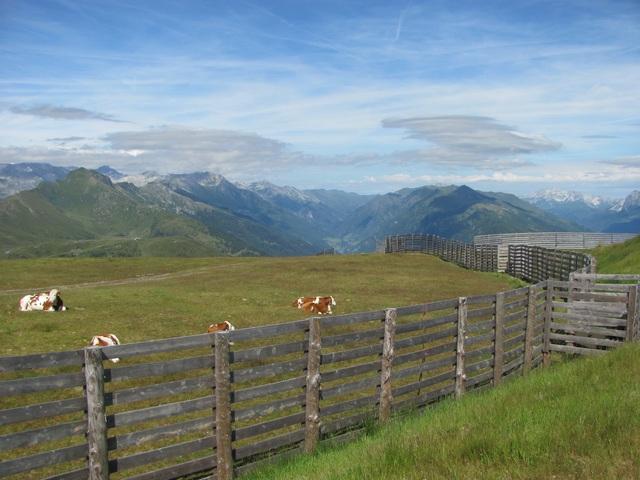 Fotócsütörtök - Osztrák hegytető