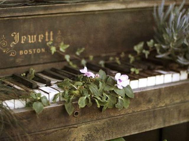 Monday Morning Mood - Tavaszköszöntő Instrumentális