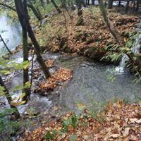 Fotócsütörtök - Őszínes kavalkád a Plitvicei-tavaknál