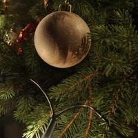 Fotócsütörtök - Boldog karácsonyt!