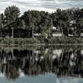 Fotócsütörtök - Tisza-parti impresszió