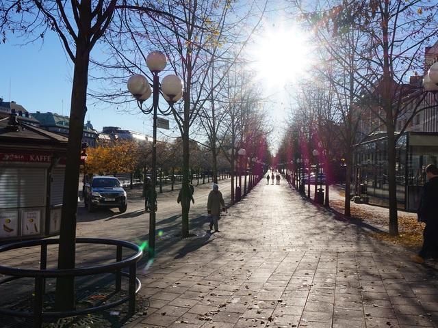 Fotócsütörtök - Napos séta