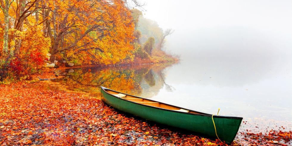 autumn_leaf.jpg
