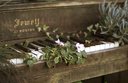 piano_nature.jpg