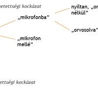 A nyelvészeti udvariasság megközelítésének alapjai II.
