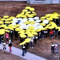Flash mob city, Pécs