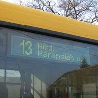 Pécs a buszsofőrök szemszögéből