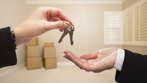 Védjegyet kaphatnak az ingatlanosok