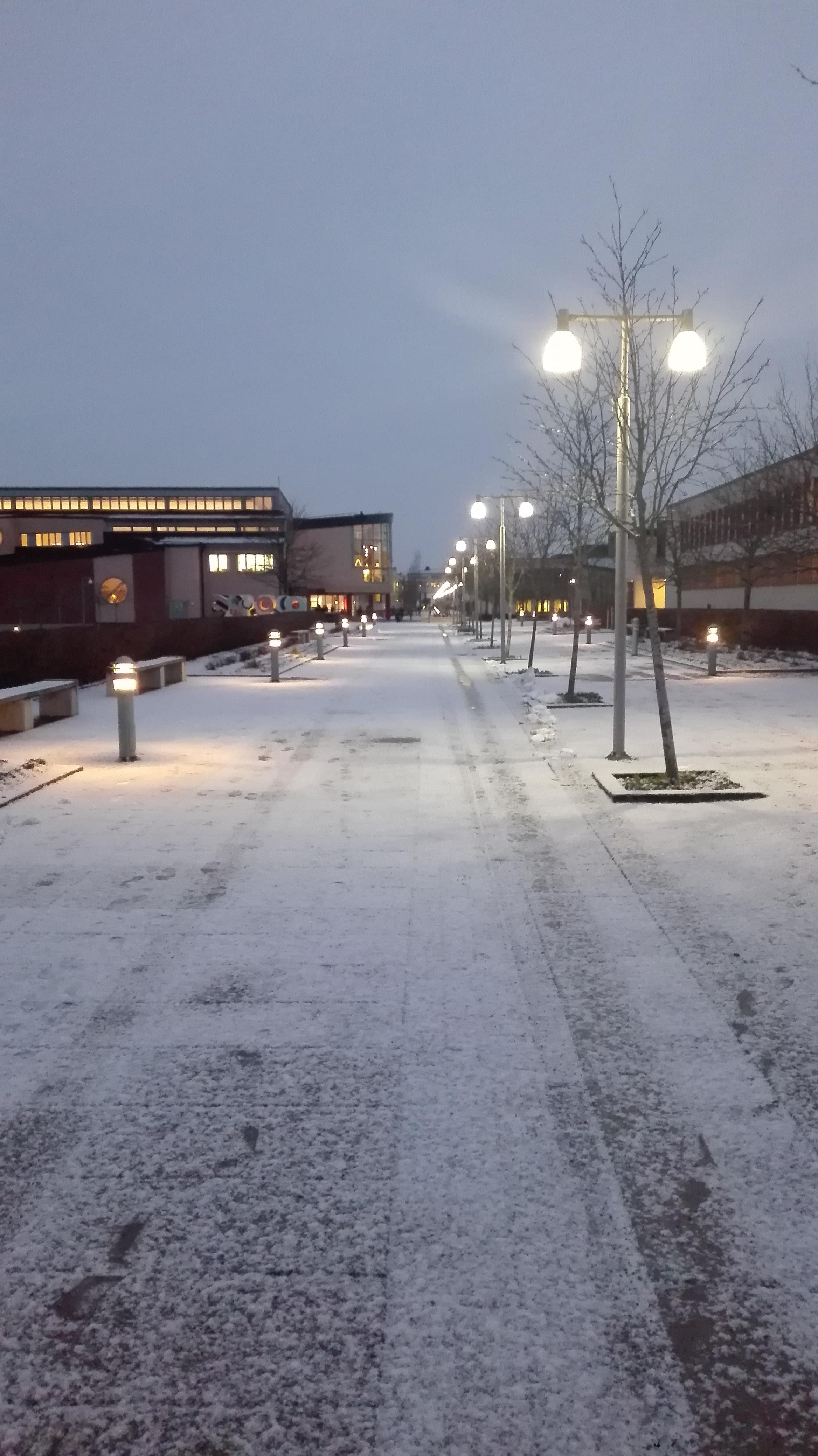 campus.jpg