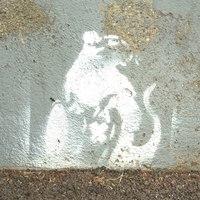 Banksy Fehérváron? 2. rész
