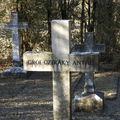 A háromarcú Börgöndpusztai temető