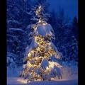 Karácsonyi Különkiadás (2. rész)