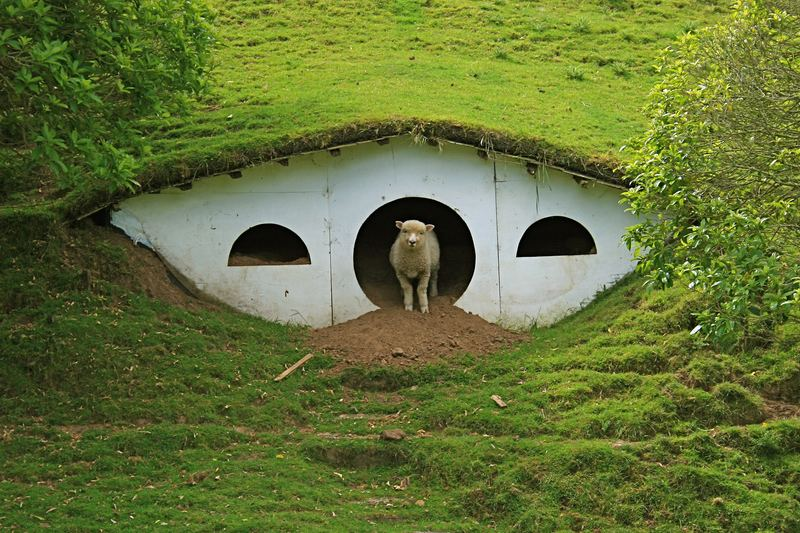 Hobbiton-13.jpg