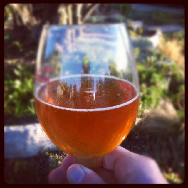 honey_beer.jpg