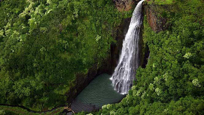 kauai-goes-hollywood1.jpg