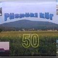 Püspöki kör 50
