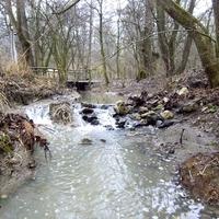 Börzsönyi patak