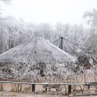 Hétvégén zárva tart a Budakeszi Vadaspark